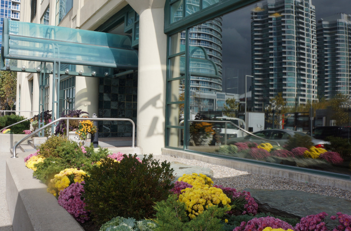 Flower bed south of the entrance to Queen's Quay Residences